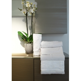Riccio Hand and Guest Towel set
